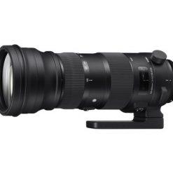 SIGMA EF 150-600mm F 5-6,3 DG