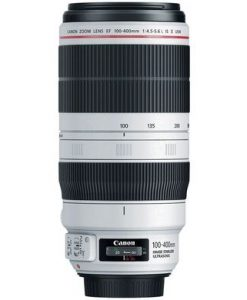CANON EF 100-400 F4,5 - 5,6 IS RENTAL